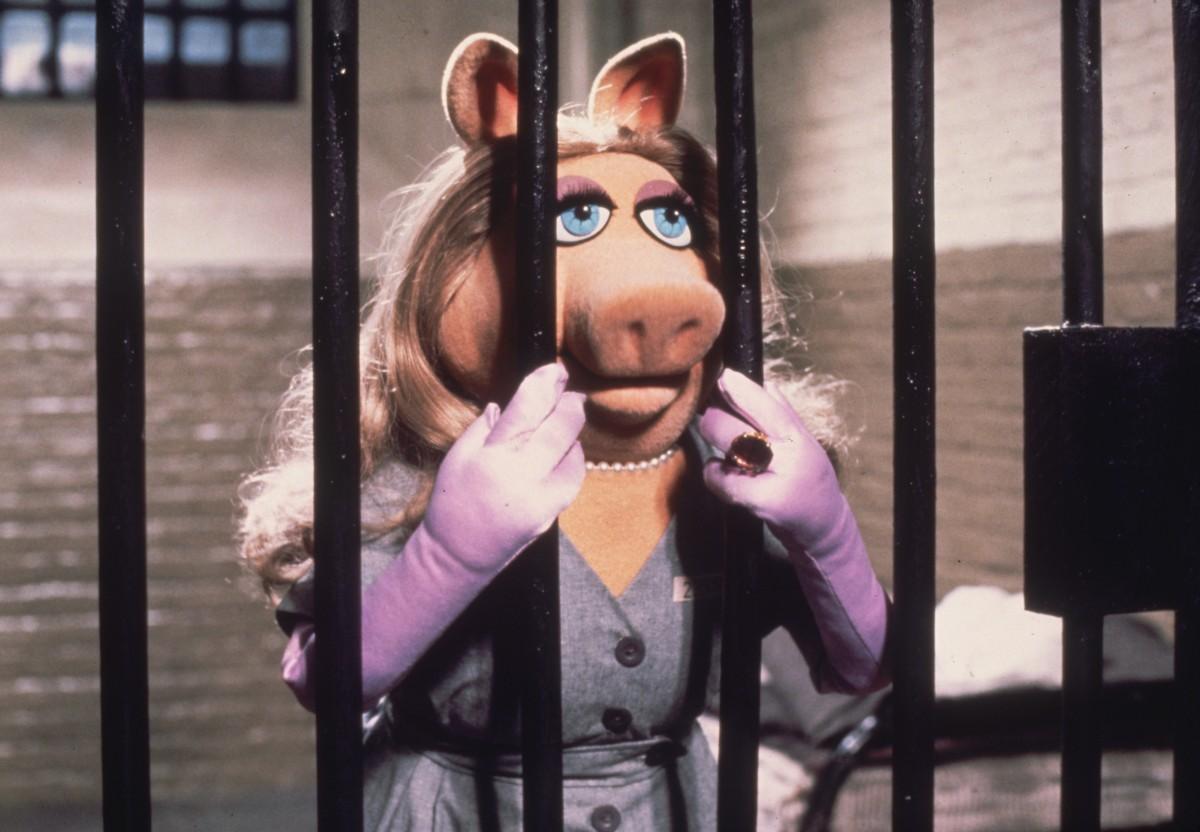 Piggy In The Pokey