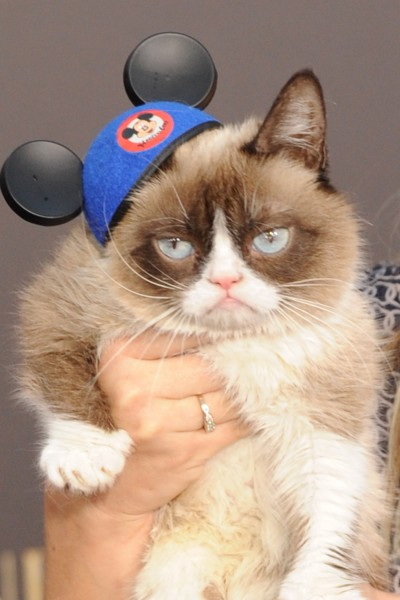 "Grumpy Cat== THE WORLD PREMIERE OF DISNEY'S BREATHTAKING LIVE ACTION ""CINDERELLA""== El Capitan Theater, Hollywood, Ca== March 1, 2015== ©Patrick McMullan== Photo Ð DAVID CROTTY/patrickmcmullan.com=="
