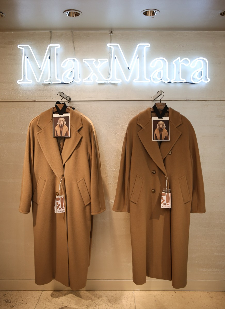 MAX MARA CELEBRATES: WILLIAM WEGMAN'S 'DOGS IN COATS'