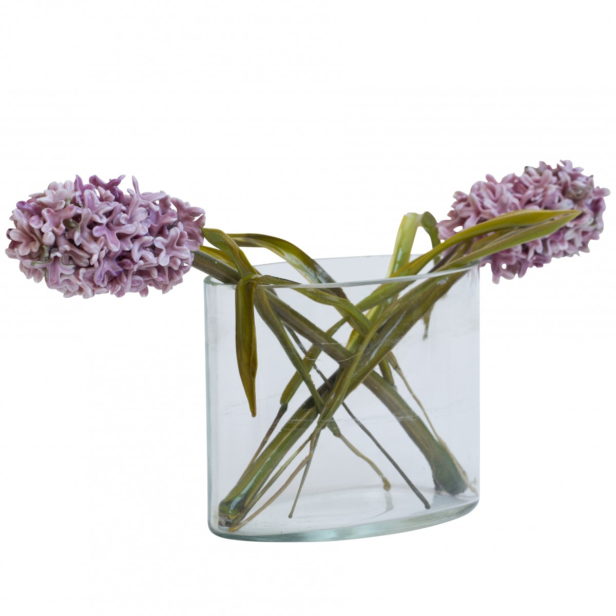 Lilla Tabasso – Bouquet of Hyacint Flowers – Available on www.artemest.com