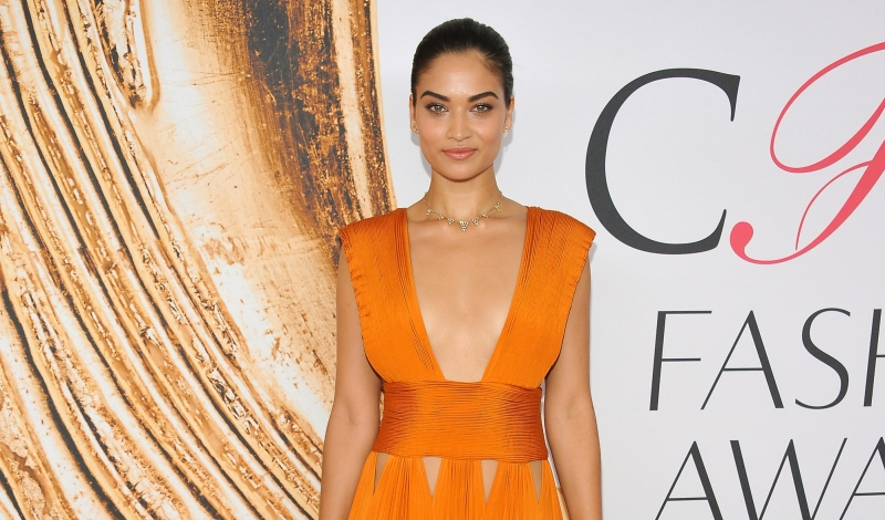 NEW YORK, NY - JUNE 06:  Shanina Shaik attends the 2016 CFDA Fashion Awards at the Hammerstein Ballroom on June 6, 2016 in New York City.  (Photo by D Dipasupil/FilmMagic)
