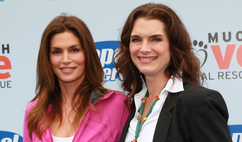 "MALIBU, CA - APRIL 02:  Supermodel Cindy Crawford (L) and actress Brooke Shields attend the ""Propel Zero to 1000"" celebrity dog-walking event at Church Estate Vineyards on April 2, 2011 in Malibu, California.  (Photo by David Livingston/Getty Images)"