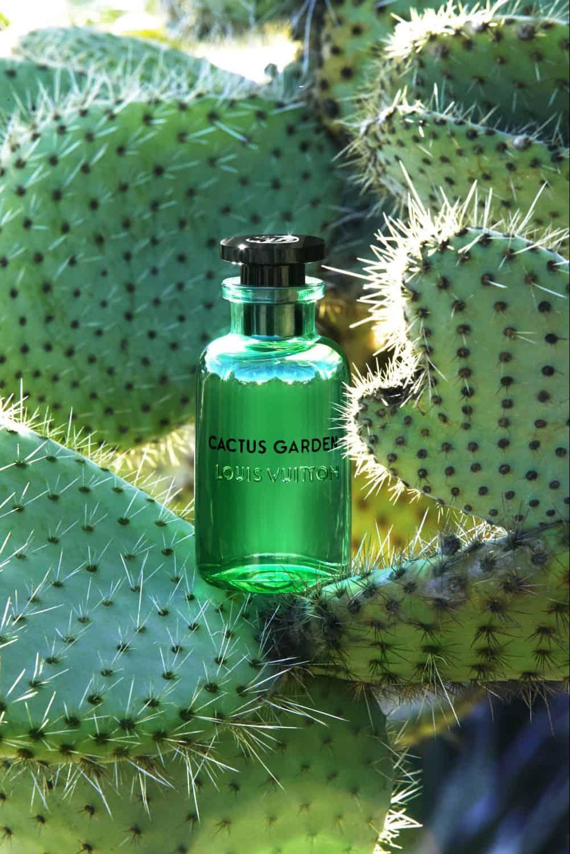 Editor's Pick: Louis Vuitton's Sun Song Unisex Cologne Perfume