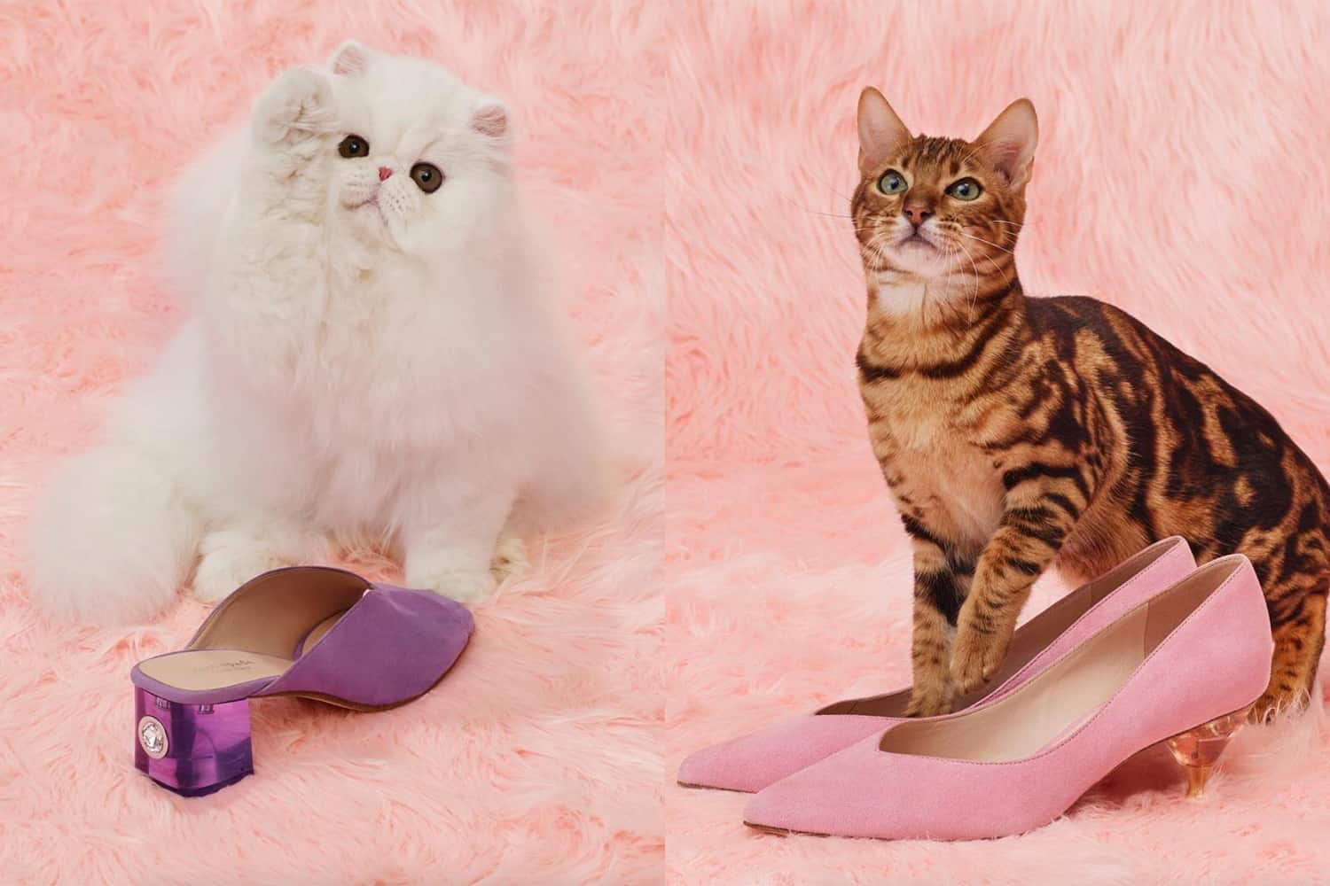 Sole Commerce Buzz: Four Cute Brands at the Show
